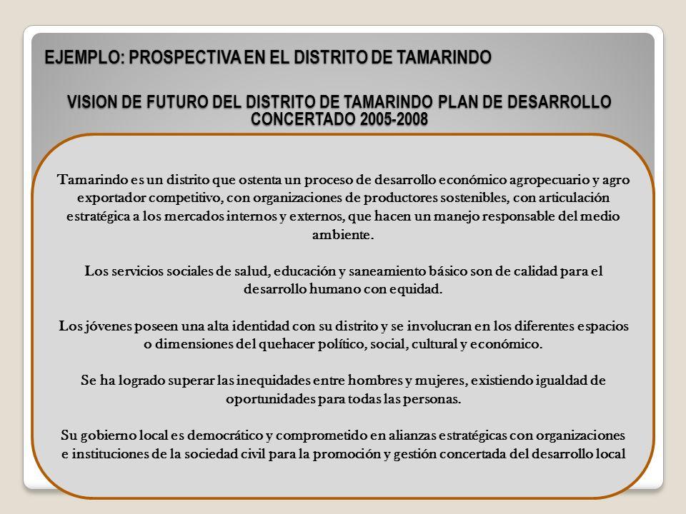 EJEMPLO: PROSPECTIVA EN EL DISTRITO DE TAMARINDO