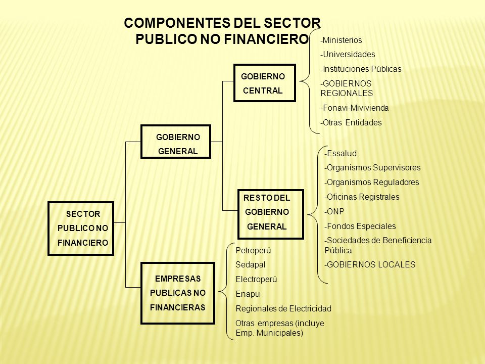 COMPONENTES DEL SECTOR PUBLICO NO FINANCIERO