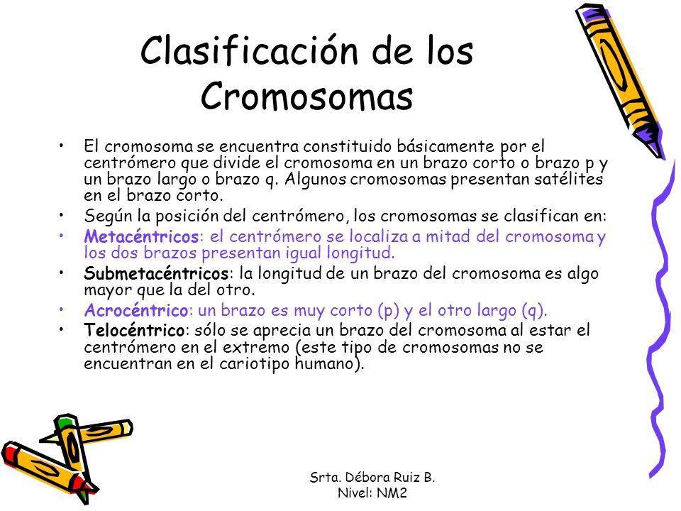 Clasificación de los Cromosomas