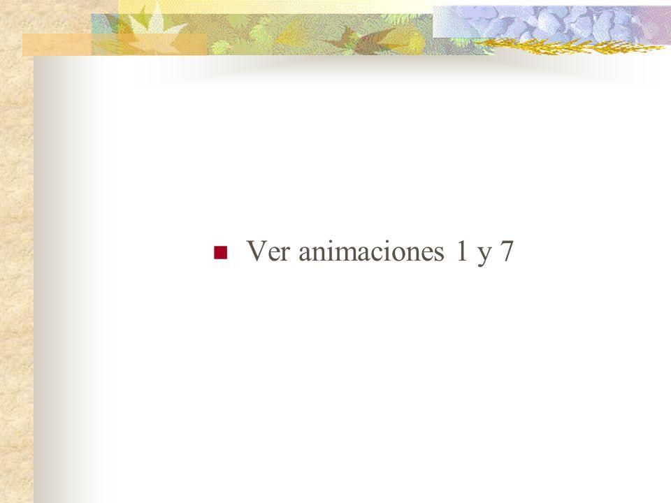 Ver animaciones 1 y 7