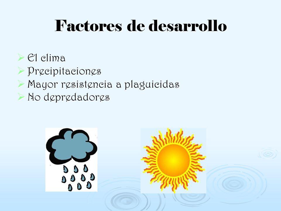 Factores de desarrollo