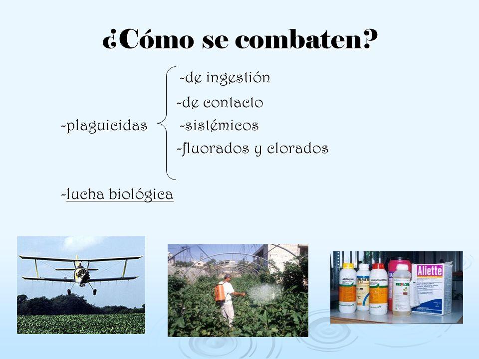 ¿Cómo se combaten -de ingestión -de contacto -plaguicidas -sistémicos