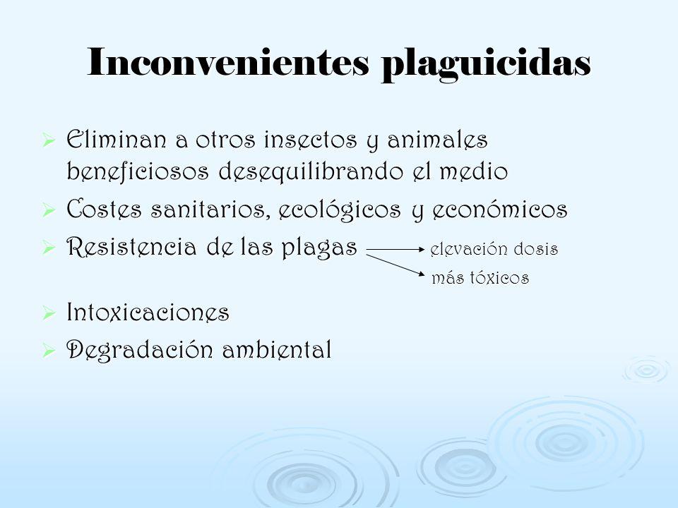 Inconvenientes plaguicidas