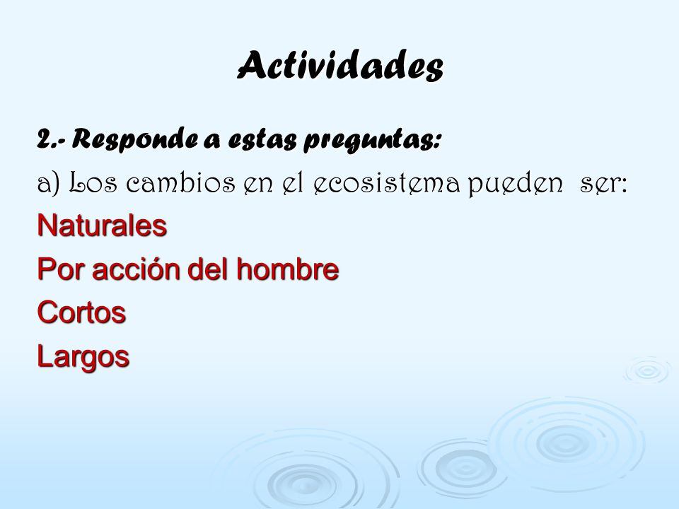 Actividades 2.- Responde a estas preguntas: