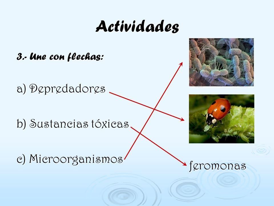 Actividades a) Depredadores b) Sustancias tóxicas c) Microorganismos