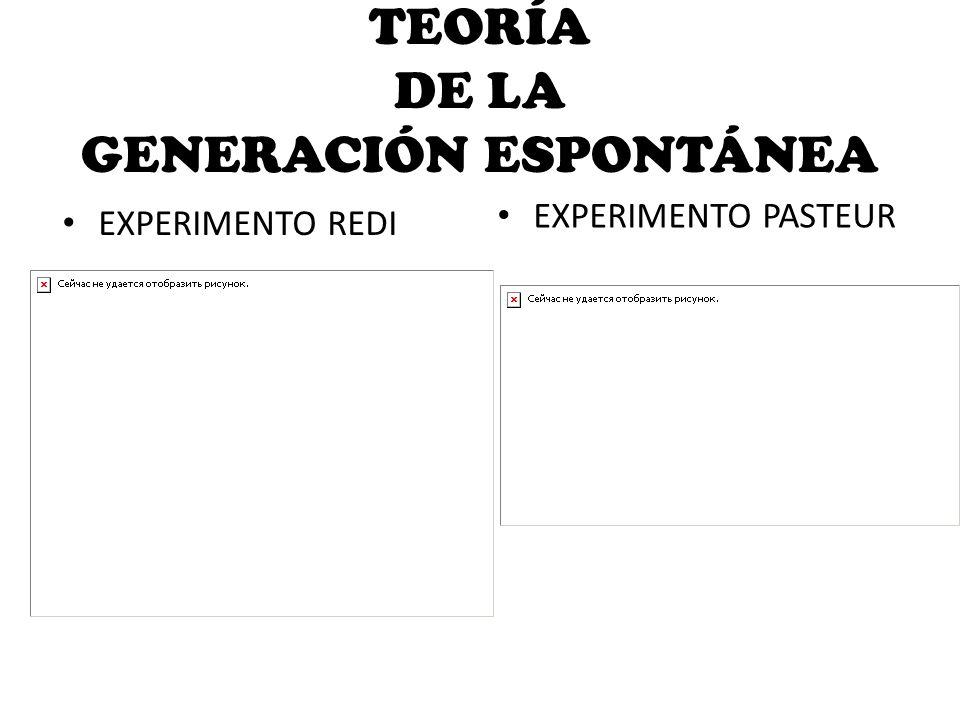 TEORÍA DE LA GENERACIÓN ESPONTÁNEA
