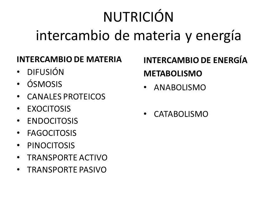 NUTRICIÓN intercambio de materia y energía