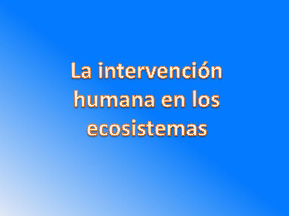 La intervención humana en los ecosistemas