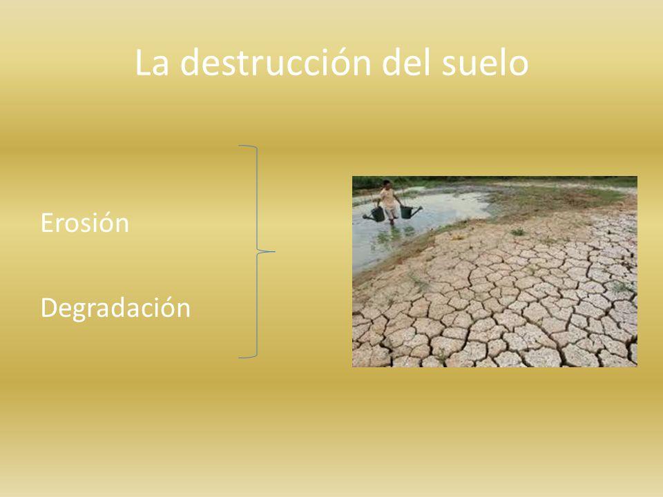 La destrucción del suelo