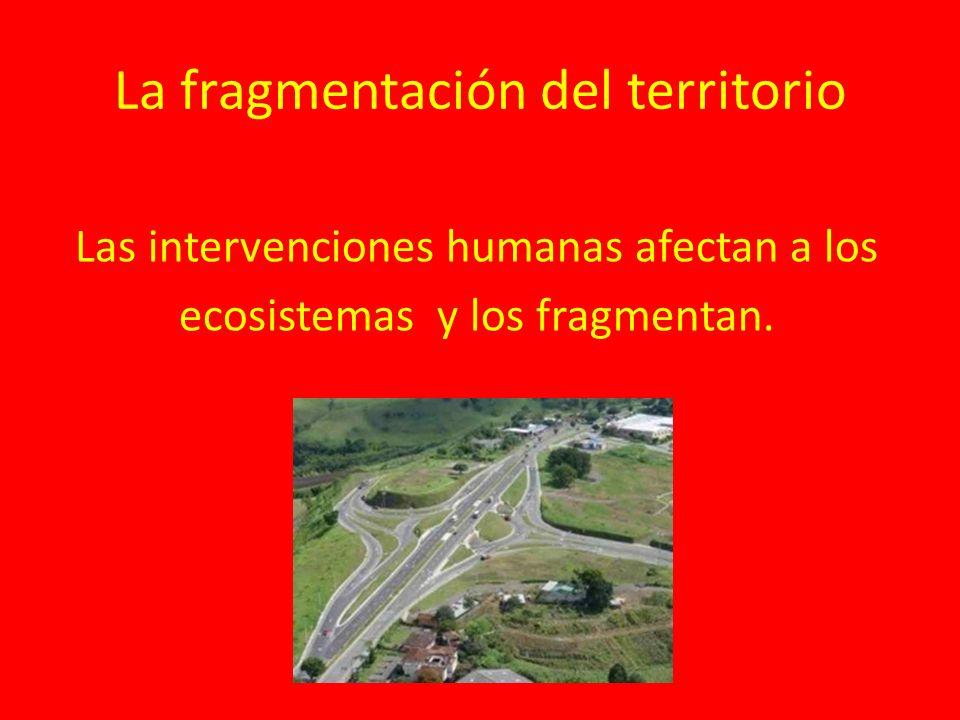 La fragmentación del territorio