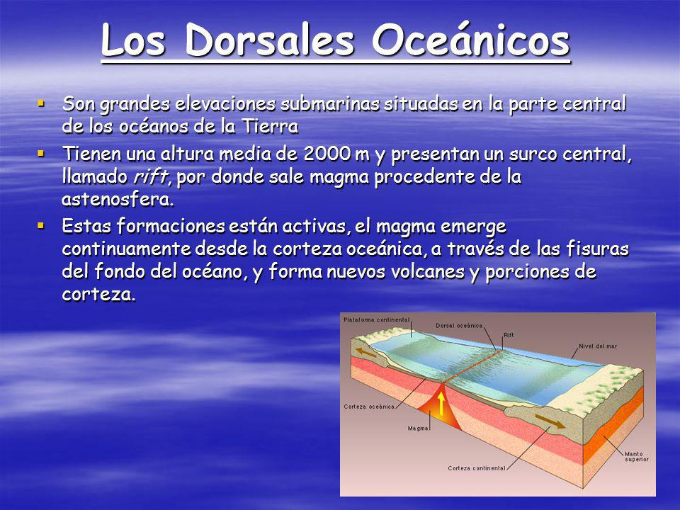 Los Dorsales Oceánicos