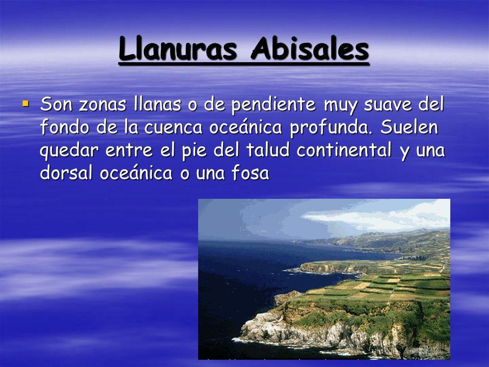 Llanuras Abisales