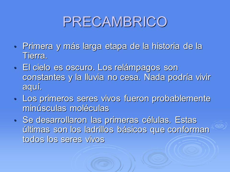 PRECAMBRICO Primera y más larga etapa de la historia de la Tierra.