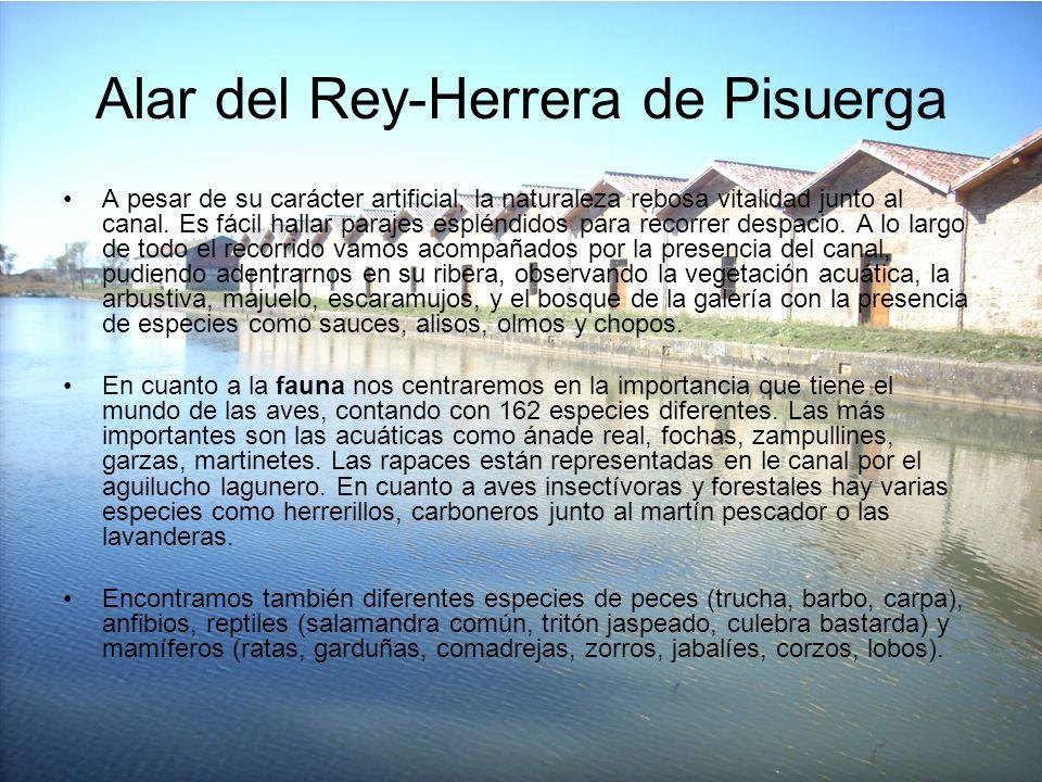 Alar del Rey-Herrera de Pisuerga