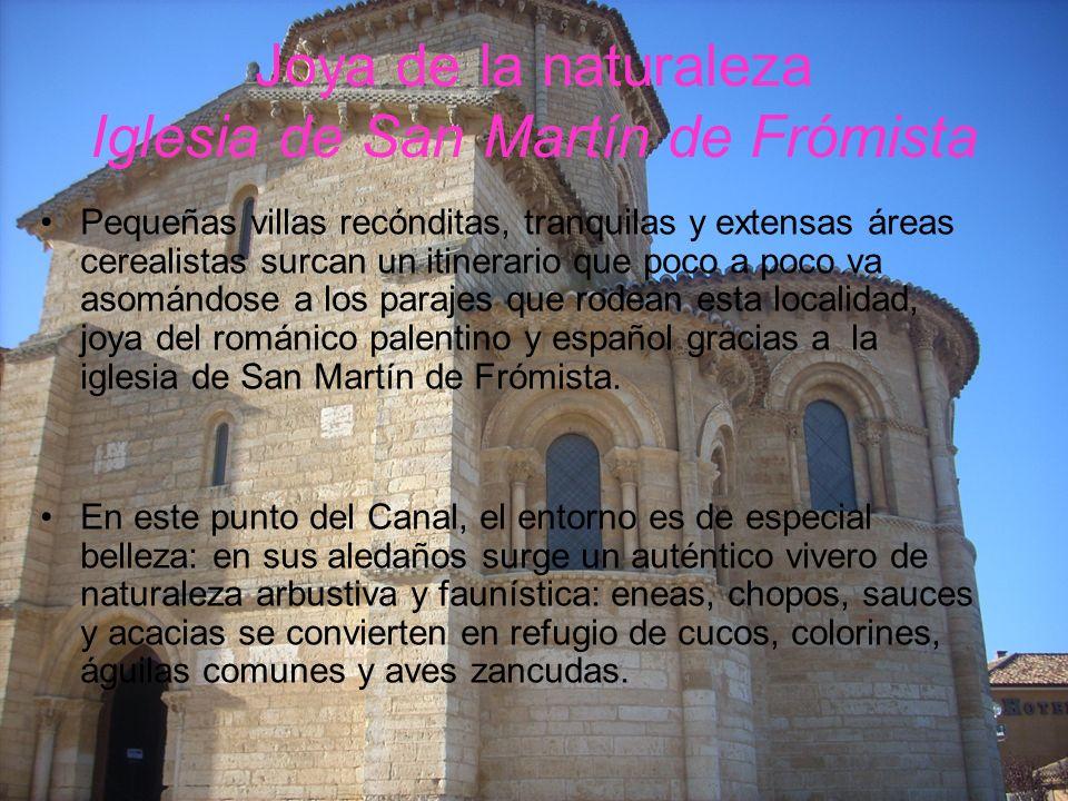 Joya de la naturaleza Iglesia de San Martín de Frómista