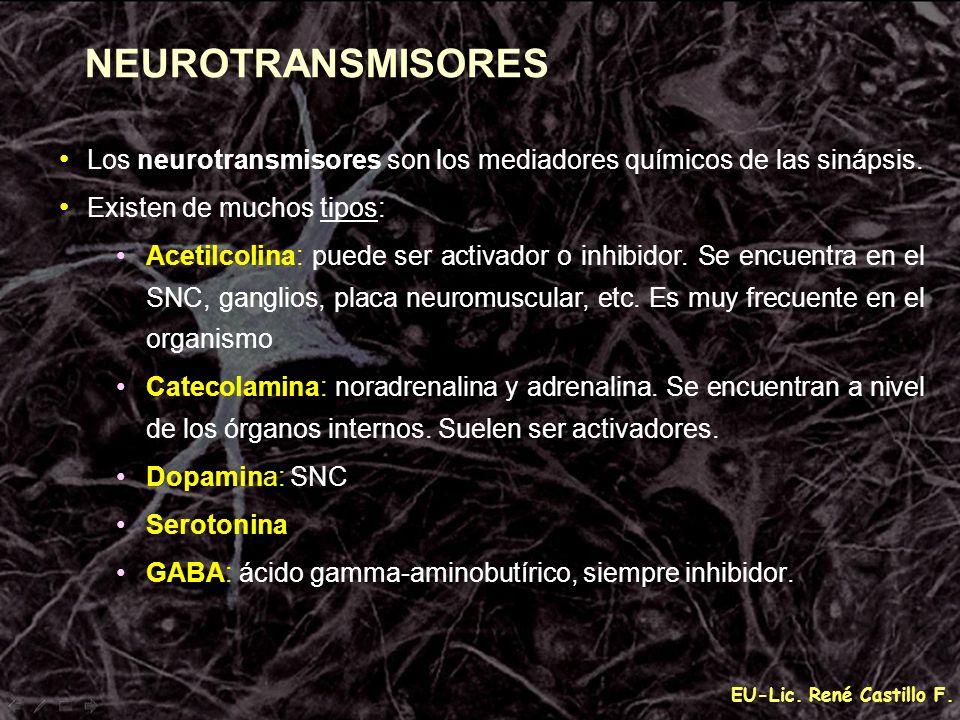 NEUROTRANSMISORES Los neurotransmisores son los mediadores químicos de las sinápsis. Existen de muchos tipos:
