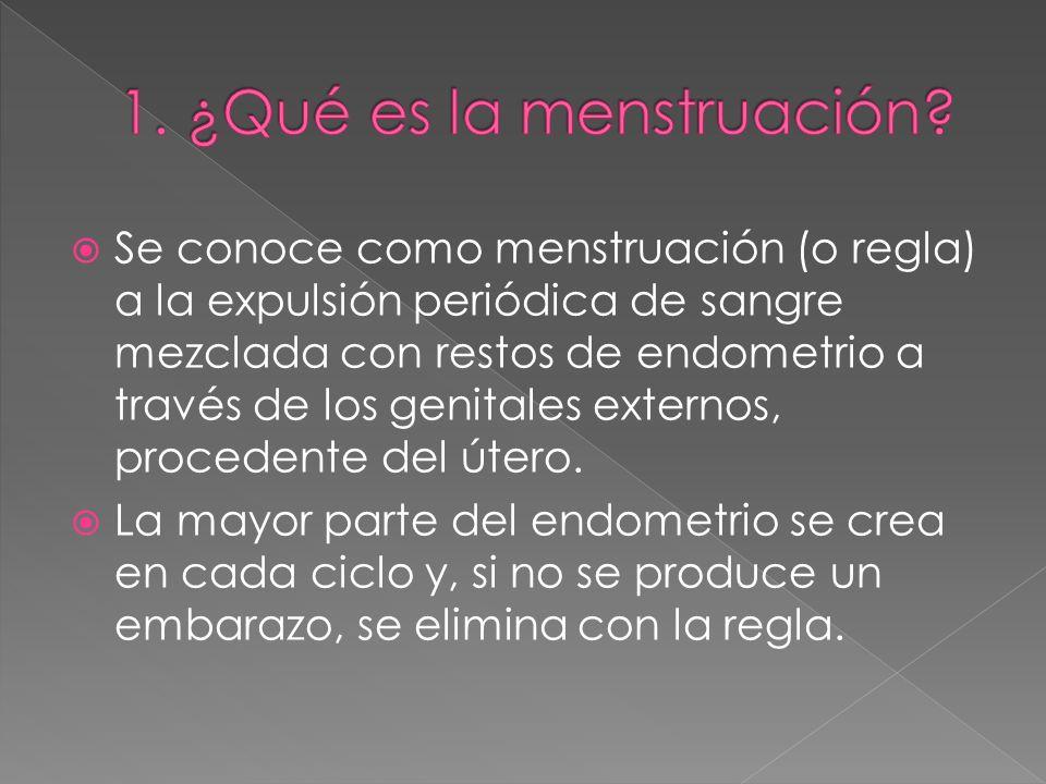 1. ¿Qué es la menstruación