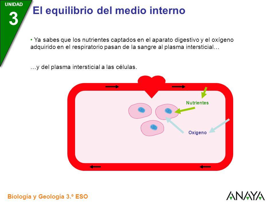 …y del plasma intersticial a las células.