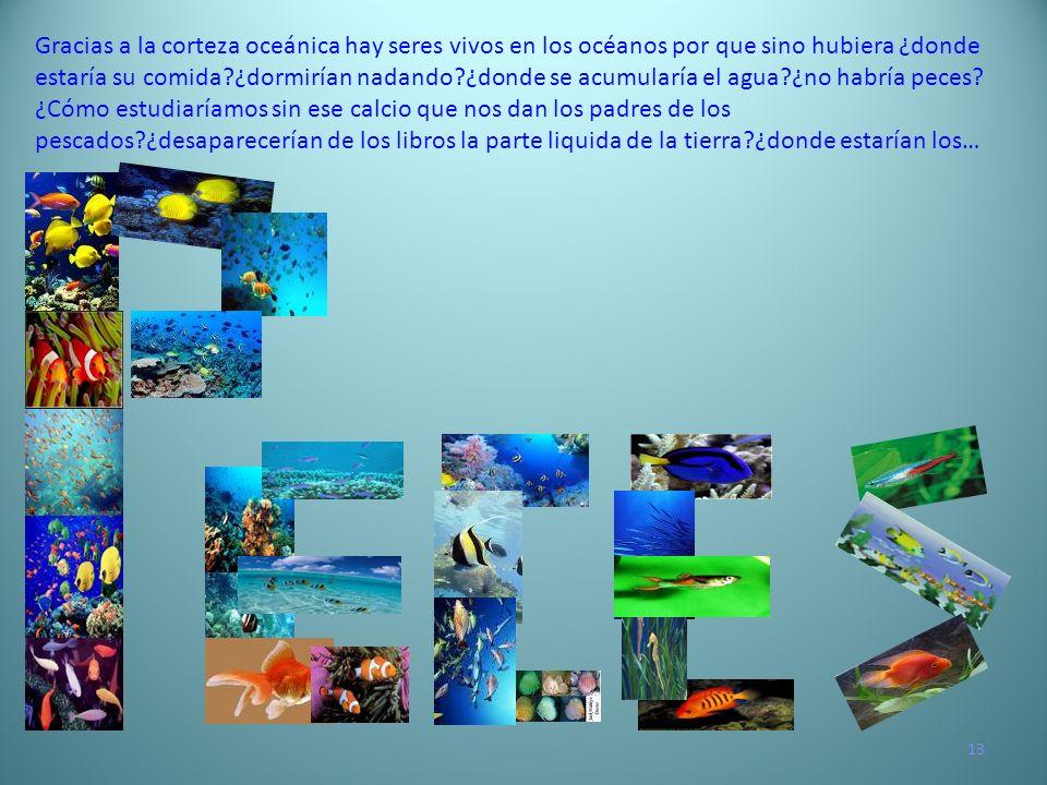 Gracias a la corteza oceánica hay seres vivos en los océanos por que sino hubiera ¿donde estaría su comida ¿dormirían nadando ¿donde se acumularía el agua ¿no habría peces
