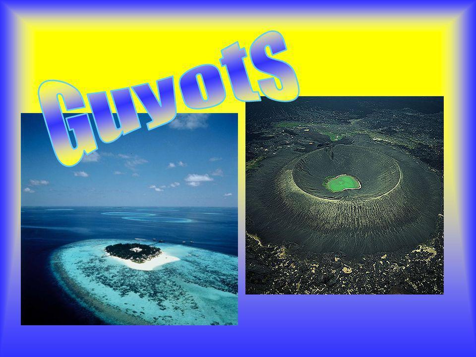 Guyots