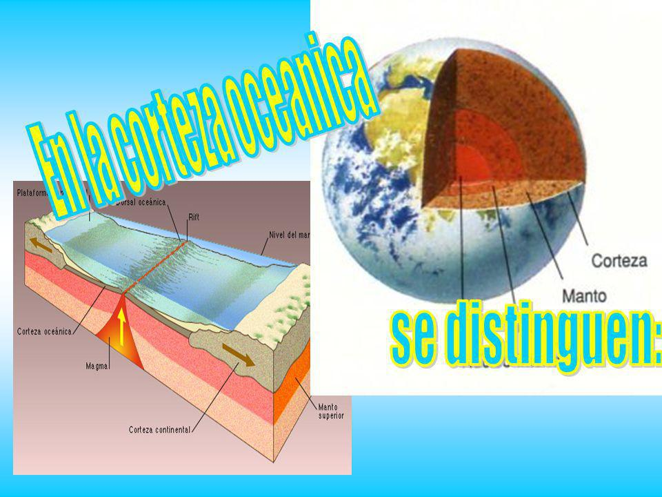 En la corteza oceanica se distinguen: