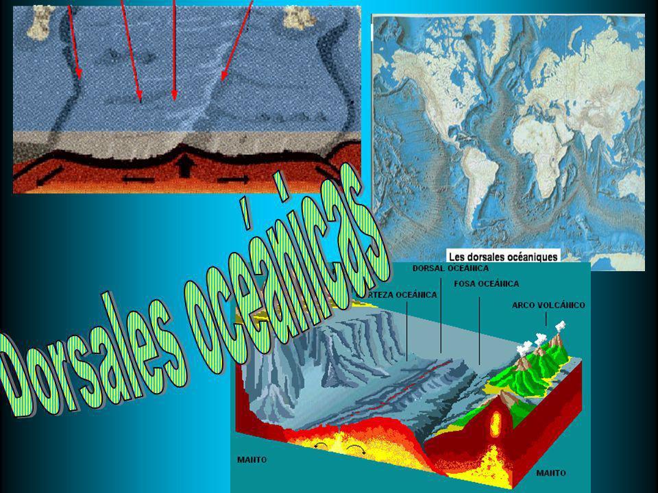 Dorsales oceánicas