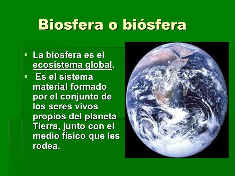 Biosfera o biósfera La biosfera es el ecosistema global.