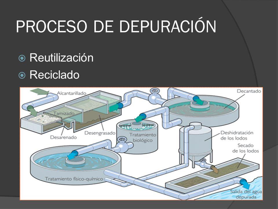 PROCESO DE DEPURACIÓN Reutilización Reciclado