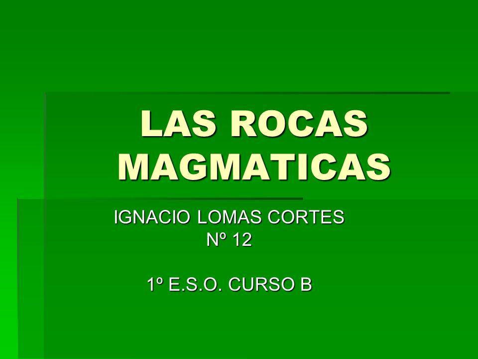 IGNACIO LOMAS CORTES Nº 12 1º E.S.O. CURSO B