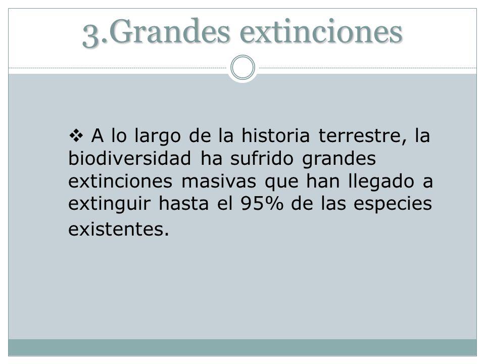 3.Grandes extinciones