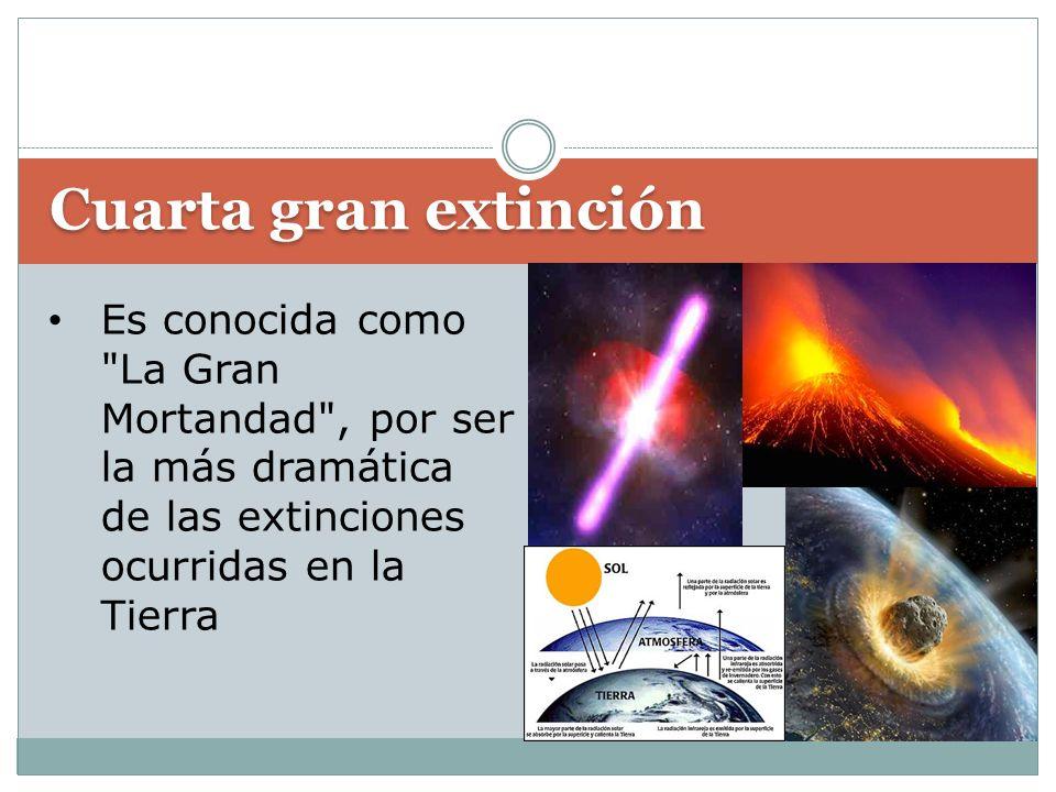 Cuarta gran extinción Es conocida como La Gran Mortandad , por ser la más dramática de las extinciones ocurridas en la Tierra.