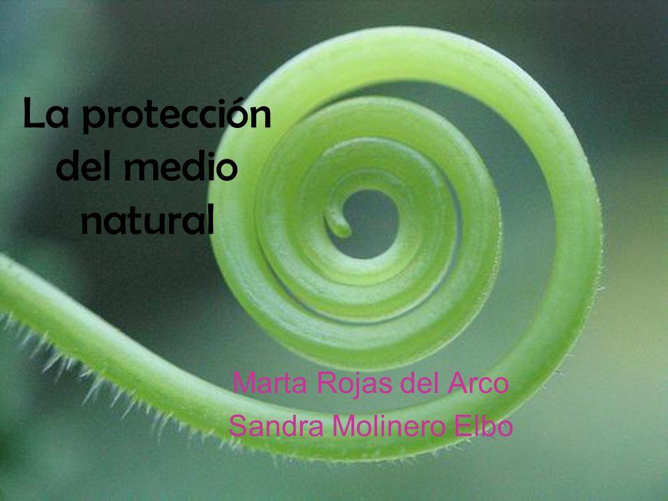 La protección del medio natural