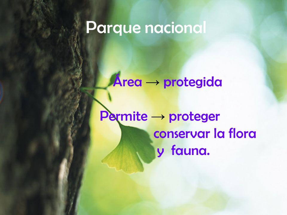 Parque nacional Área → protegida Permite → proteger conservar la flora