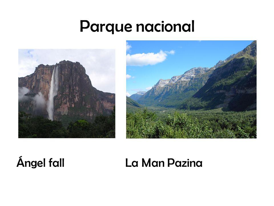 Parque nacional Ángel fall La Man Pazina