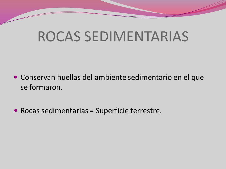ROCAS SEDIMENTARIAS Conservan huellas del ambiente sedimentario en el que se formaron.