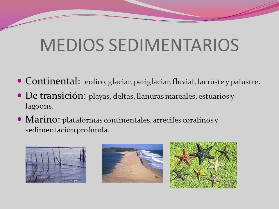 MEDIOS SEDIMENTARIOSContinental: eólico, glaciar, periglaciar, fluvial, lacruste y palustre.