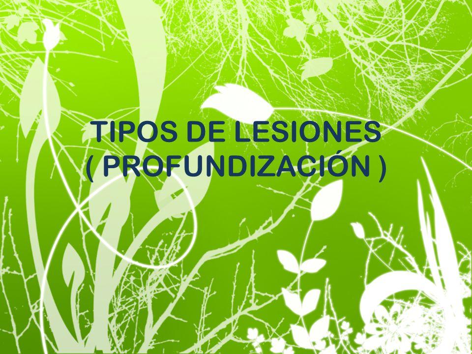 TIPOS DE LESIONES ( PROFUNDIZACIÓN )