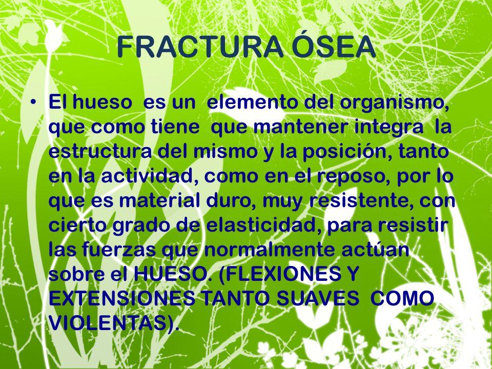 FRACTURA ÓSEA