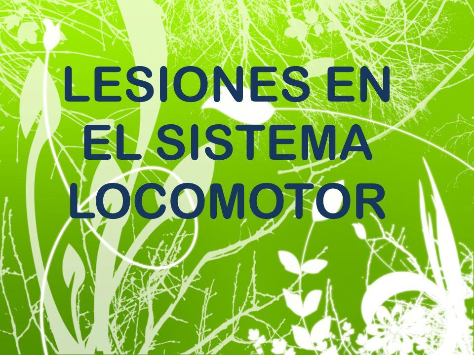 LESIONES EN EL SISTEMA LOCOMOTOR