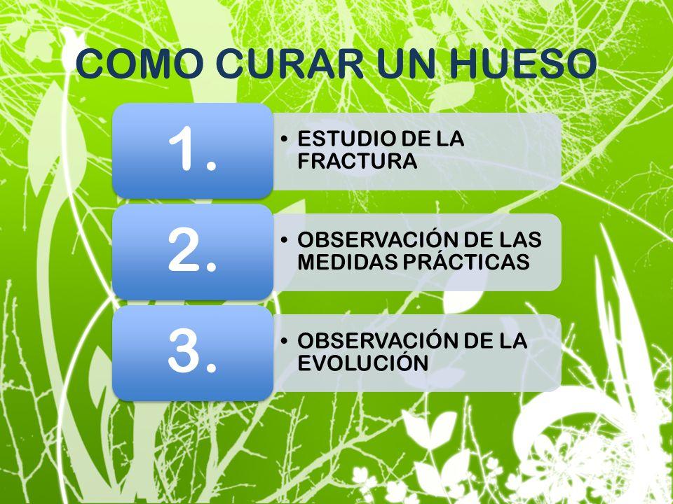 COMO CURAR UN HUESO 1. ESTUDIO DE LA FRACTURA 2.