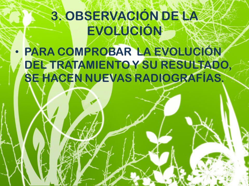 3. OBSERVACIÓN DE LA EVOLUCIÓN