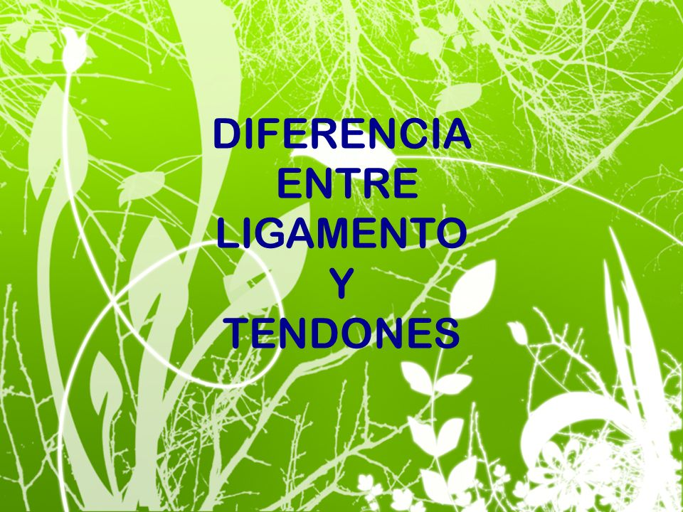 DIFERENCIA ENTRE LIGAMENTO Y TENDONES