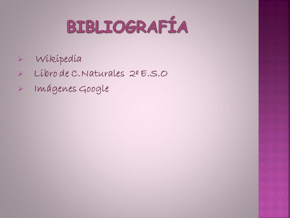 Bibliografía Wikipedia Libro de C.Naturales 2º E.S.O Imágenes Google