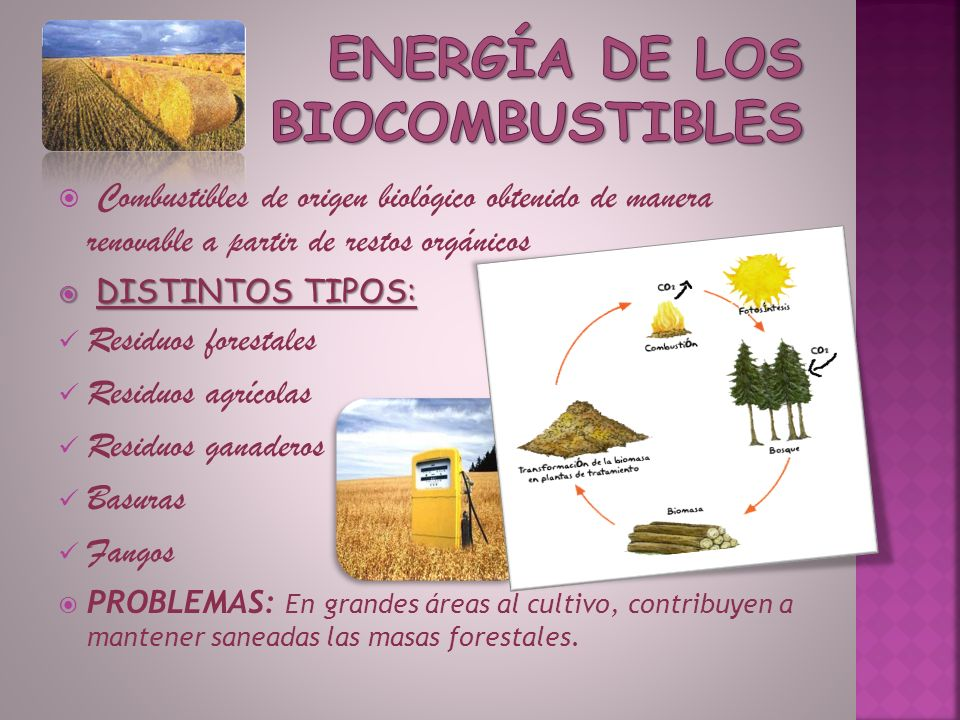 Energía de los biocombustibles