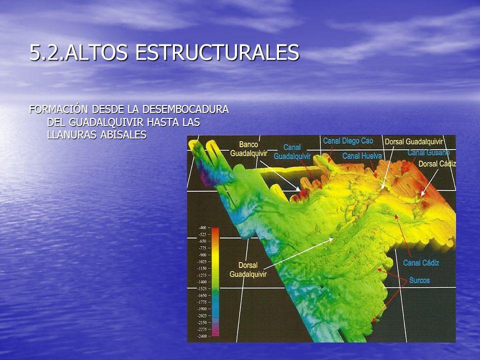5.2.ALTOS ESTRUCTURALES FORMACIÓN DESDE LA DESEMBOCADURA DEL GUADALQUIVIR HASTA LAS LLANURAS ABISALES.