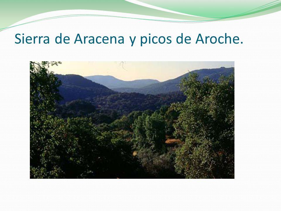 Sierra de Aracena y picos de Aroche.