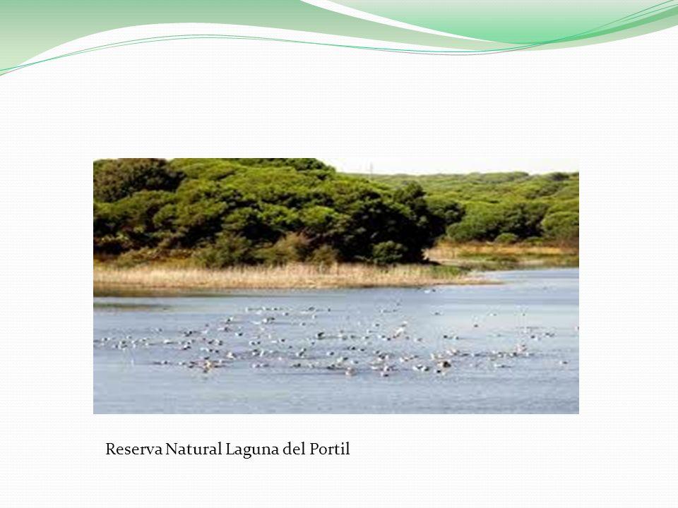 Reserva Natural Laguna del Portil