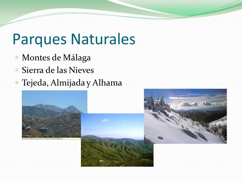 Parques Naturales Montes de Málaga Sierra de las Nieves