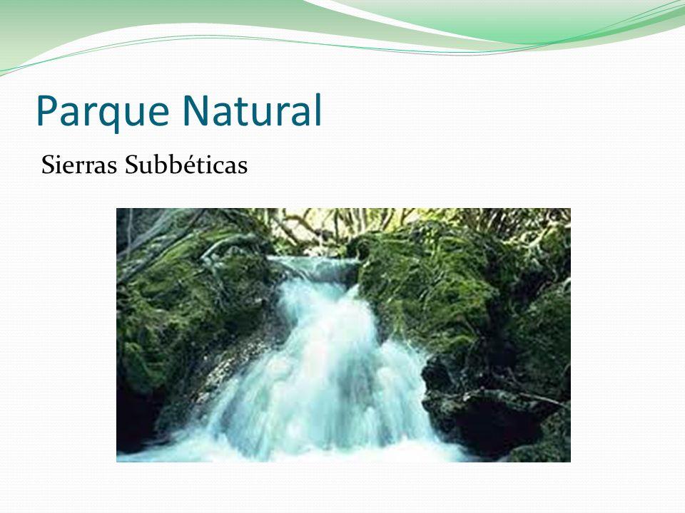 Parque Natural Sierras Subbéticas