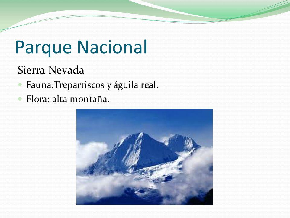 Parque Nacional Sierra Nevada Fauna:Treparriscos y águila real.
